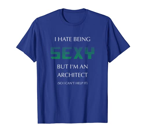 I Hate Being Sexy But I'm An Architect Funny T-shirt